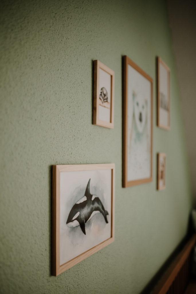 photographe à domicile Alsace